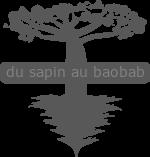 DSAB logo gris